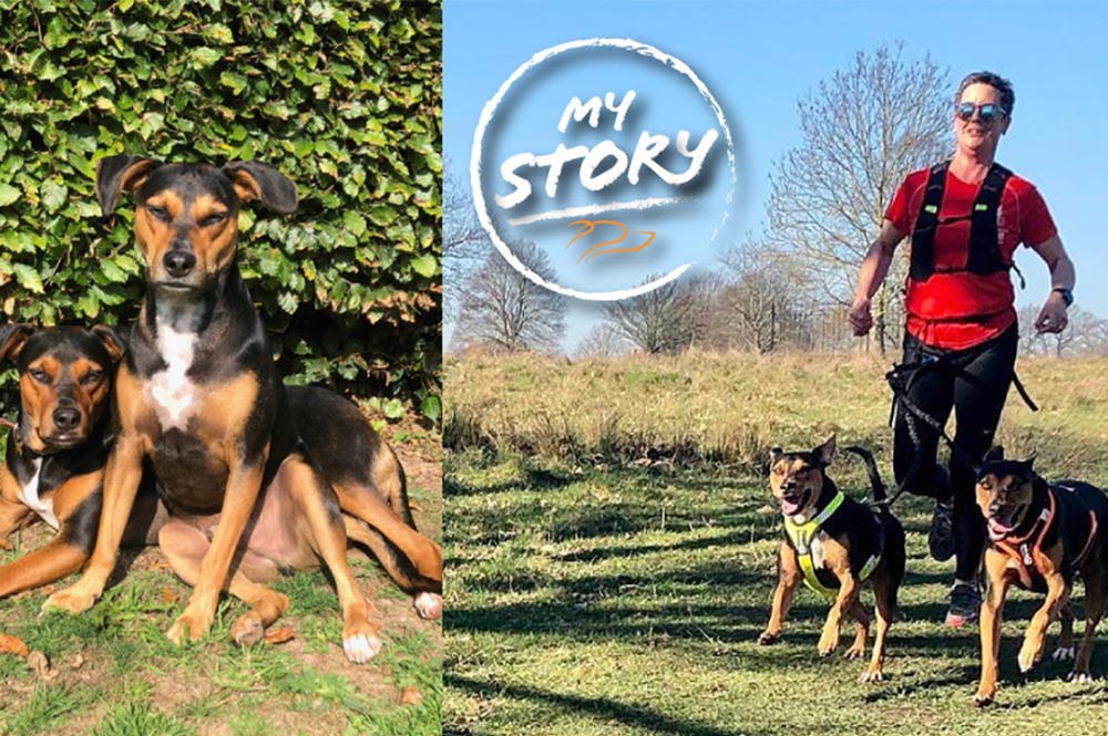 From street dogs to canicross dogs – Bert and Vic's unique and touching story