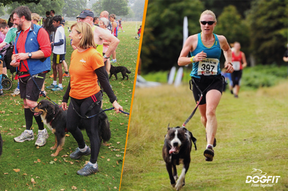 Taking part in an event with your dog, from parkruns to marathons